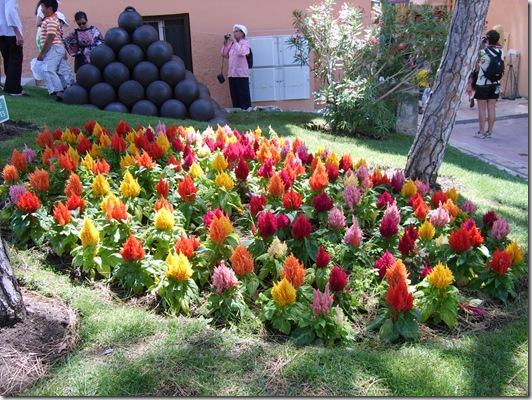 Monaco.Florile din parc.