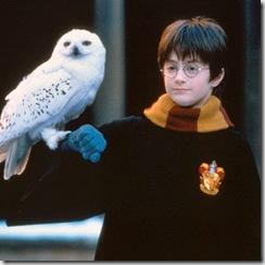 """Harry Potter poate să-i """"îndrume"""" pe cei ce se ocupă de învățământul românesc."""