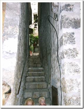 Treptele înguste = o străduță din Saint - Paul de Vence.