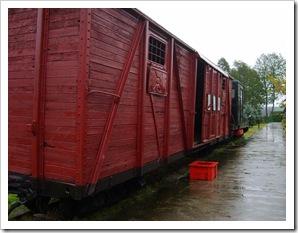 Trenul către Siberia
