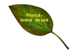 Frunza - brand de țară