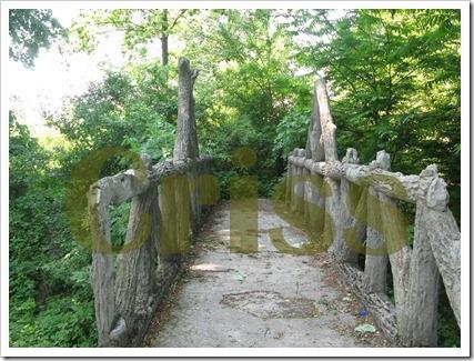 Podul spre nicăieri (3)-1
