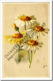 Carti postale vechi (13)-001