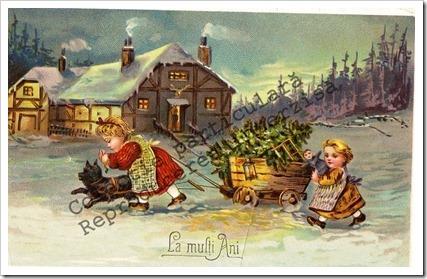 Carti postale vechi (17)-001