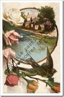 Carti postale vechi (18)-001