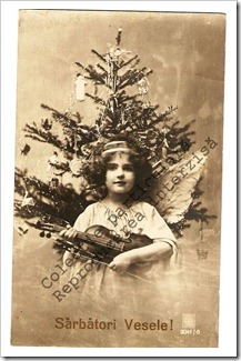 Carti postale vechi (3)-001