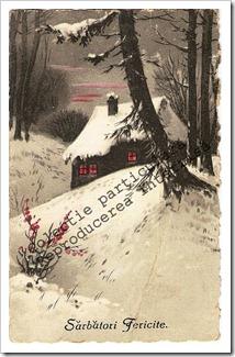 Carti postale vechi (8)-001