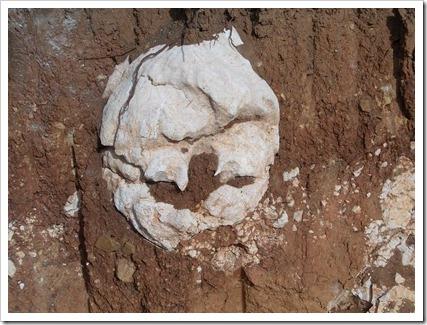 Masca din pământ (2)