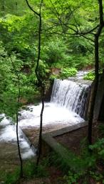 Cascada de la Peleș