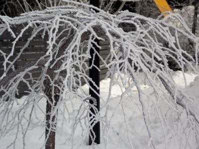 frozen-ii-18