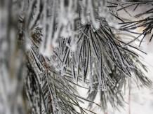 frozen-ii-9